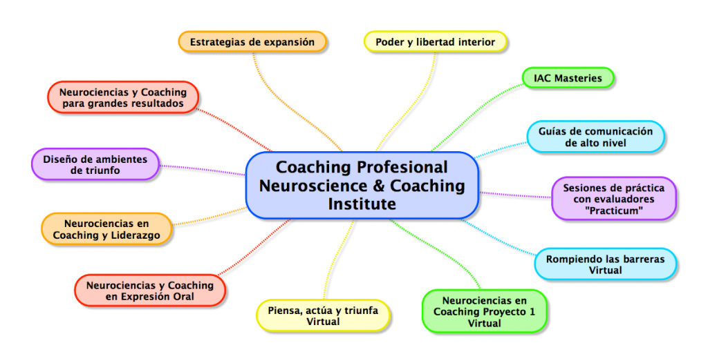 Coaching Profesional Neuroscience Coaching Institute