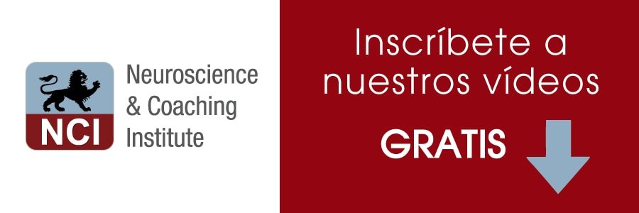 Cursos-coaching-neurociencias-13-min