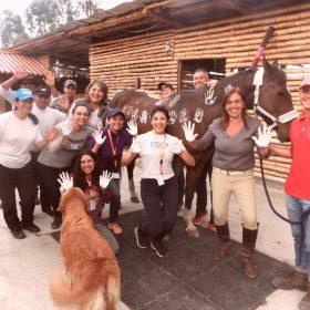 NCI-Horsecoaching-2018-005-min