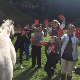 NCI-Horsecoaching-2018-015